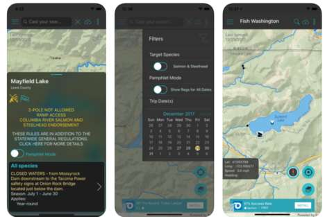 Interactive Fishing Apps