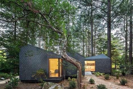 Eco Treehouse Hotels