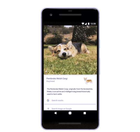 Pet-Analyzing Apps