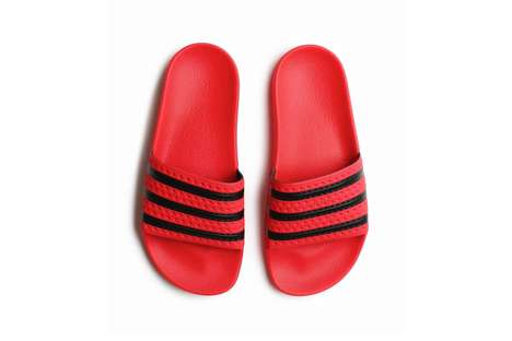 Updated Coral Slides
