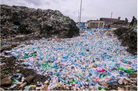 Plastic-Destroying Enzymes - Researchers Have Accidentally Created a Plastic-Eating Mutant Enzyme