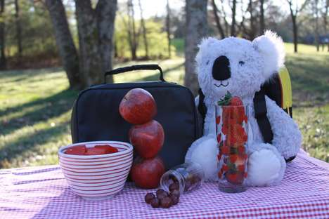 Plush Child Nutrition Kits - This Kit Uses Koalas and Animated Cards to Gets Kids to Eat Right