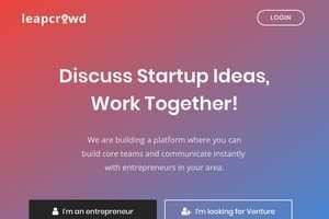 Entrepreneurial Social Networks