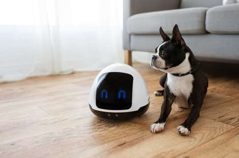 Pet Companionship Robots - The Kolony Robotic 'MIA' Pet Robot Keeps Animals Relaxed