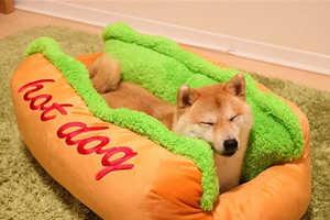 Frankfurter Pet Beds