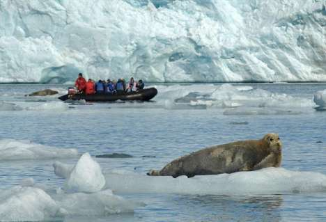 Polar Vacations - Green Movement Fuels Interest in Antarctica Cruises and Expeditions