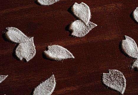 Intricate Salt Mazes