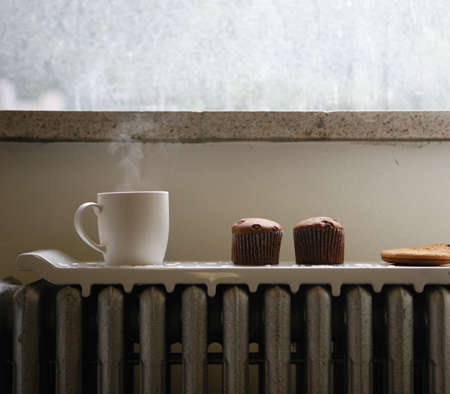Retro Radiator Warming – Heat Up Your Food On The 'Natural Wave' Tray
