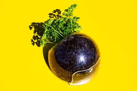 Herb-Growing Wall Orbs - Urbz is a Planter That is Both Functional and Visually Appealing