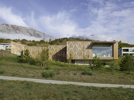 Patterned Plywood Facades