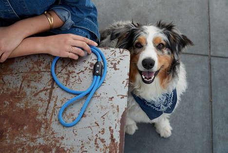 Long-Lasting Dog Leashes