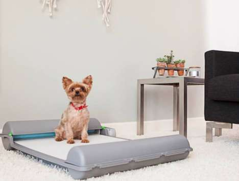 Automated Indoor Canine Toilets