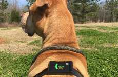 Temperature-Sensing Dog Harnesses
