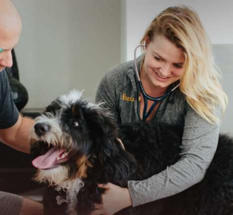 Subscription Veterinarian Services