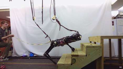 Disaster-Tacking Rescue Robots