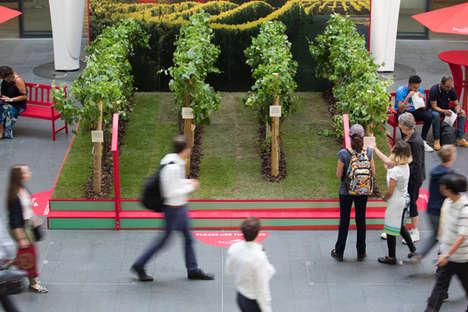Urban Micro-Vineyards