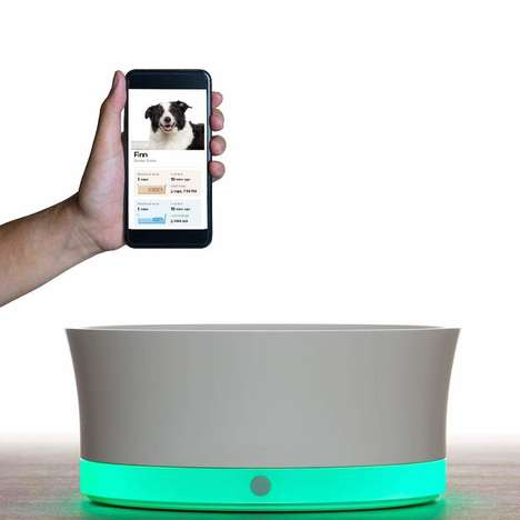 Connected Canine Food Bowls - The Obe ProBowl Weighs Food to Ensure Optimal Nutrition