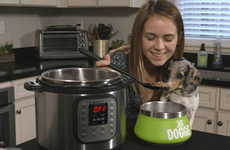 High-Quality Homemade Pet Food - YaDoggie Fresh Offers Pet Food You're Supposed to Cook
