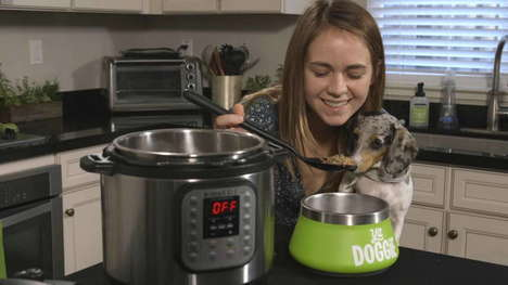 High-Quality Homemade Pet Food