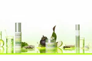 Natural Anti-Pollution Skincare