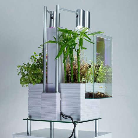 Demure Urbanite Gardens