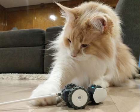 AI-Powered Cat Toys - The Petronics 'Mousr' Robotic Cat Toy Reacts to Your Pets Movements