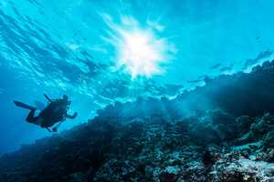 Underwater 360 VR Experiences