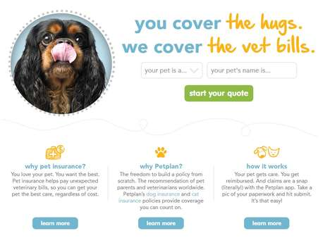 Personalized Pet Insurance Policies