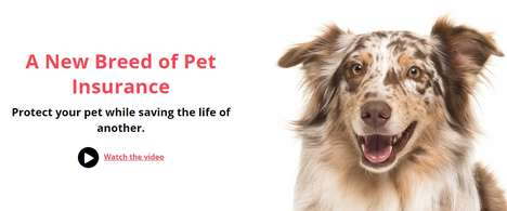 Charitable Pet Insurance Policies - TOTO Offers Pet Health Coverage That Saves Animal Lives