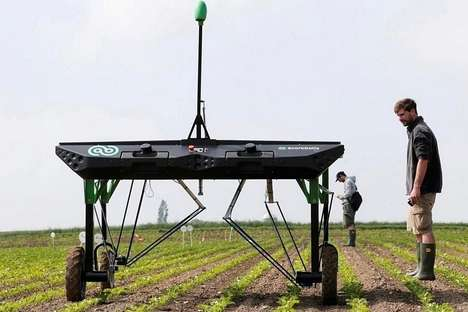 Automated Weed-Killing Robots