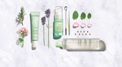 Grape Seed Skincare Collections