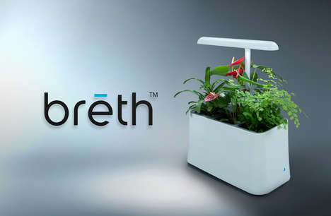 Plant-Based Air Purifiers