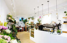 Design-Friendly Floral Shop Hybrids - PlantShed is a Luxe Boutique Destination for Your Plant Needs