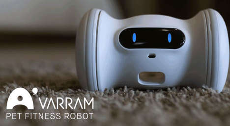 Fitness-Focused Pet Robots - The 'VARRAM' Robot Keeps Your Cat or Dog in Tiptop Physical Shape