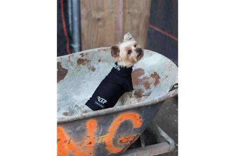 Bold Dog-Friendly Streetwear Lines