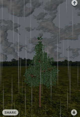 Planting Trees via iPhone