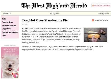 Dog Newspaper Promos
