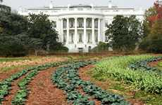 White House Locavores - Obama's Organic Garden Will Grow Food and Teach Children