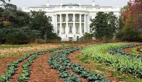 White House Locavores