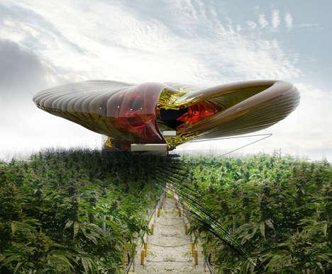 Contemporary Cannabis Farms