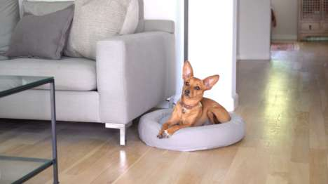 Eco-Friendly Pet Beds