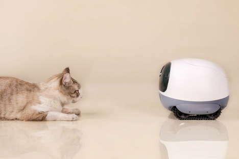 Pet-Following Cameras