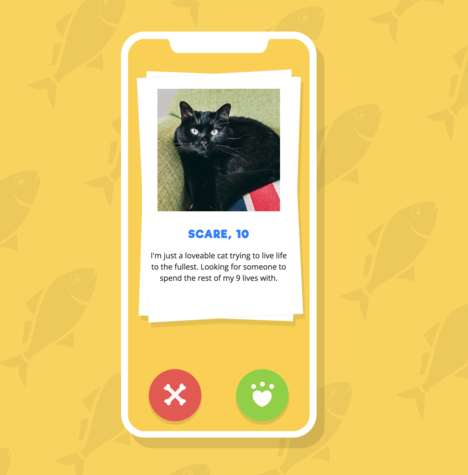 Black Cat Adoption Apps - Dare's 'This is Scare' Tinder-Style App Helps to Rehome Black Felines