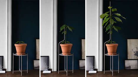 Growth-Supporting Plant Furniture