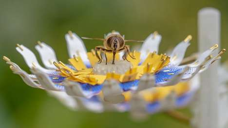 Bee-Sustaining Artificial Flowers