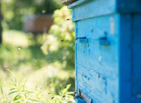 Beehive-Monitoring Sensors