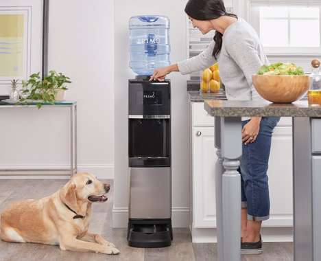 Pet-Friendly Water Dispensers