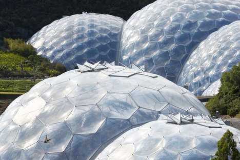 Mussel-Shaped Ecological Resorts