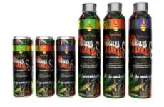 Raw Organic Cannabis Drinks - The Nubrain California Cannabis Drinks Contain Plant Stem Cells
