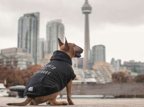 Torontonian Dog Apparel - Canada Pooch and Peace Collective Joined to Design Adorable Dog Hoodies